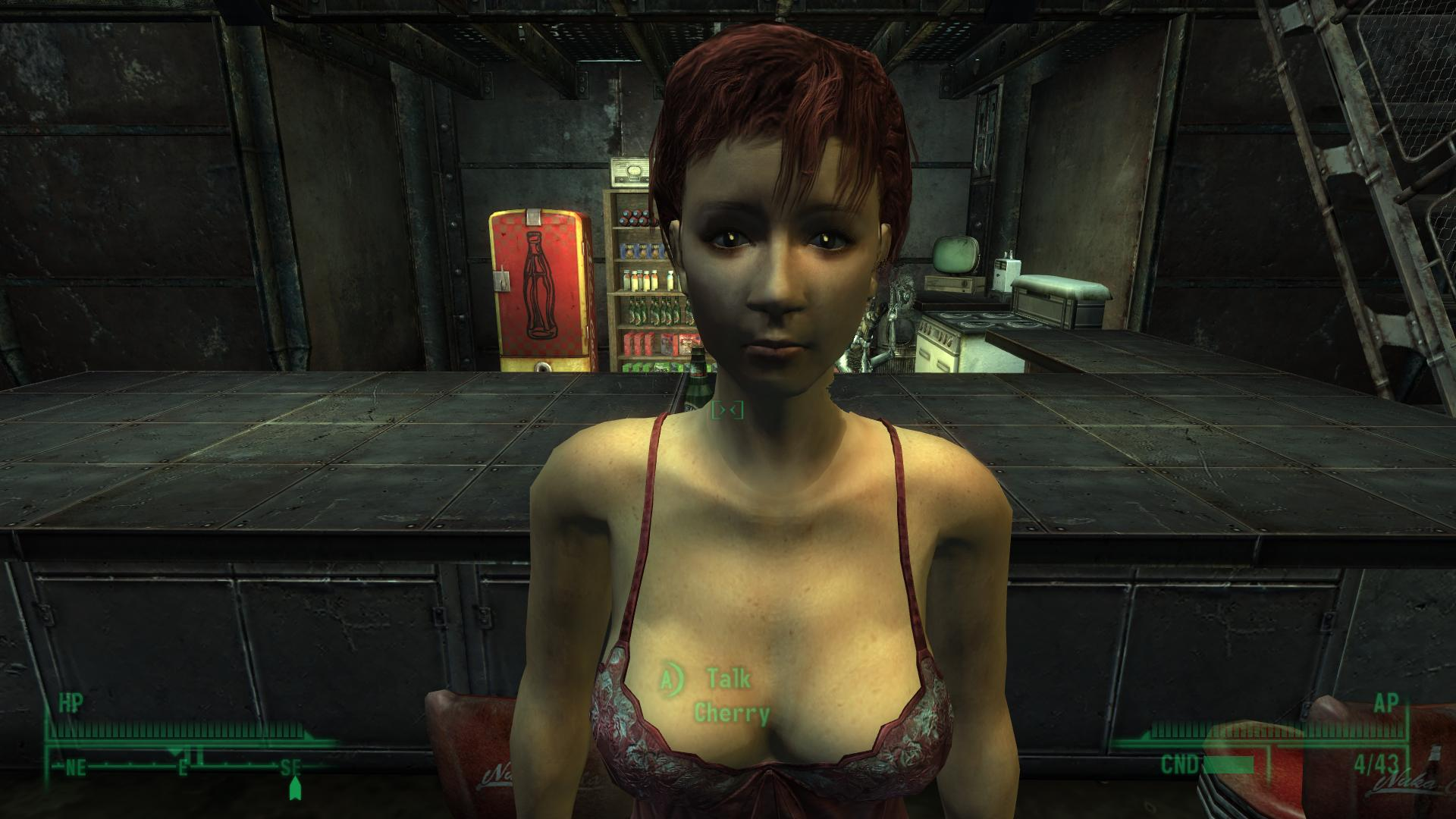 Fallout 3 секс мод для женьшин