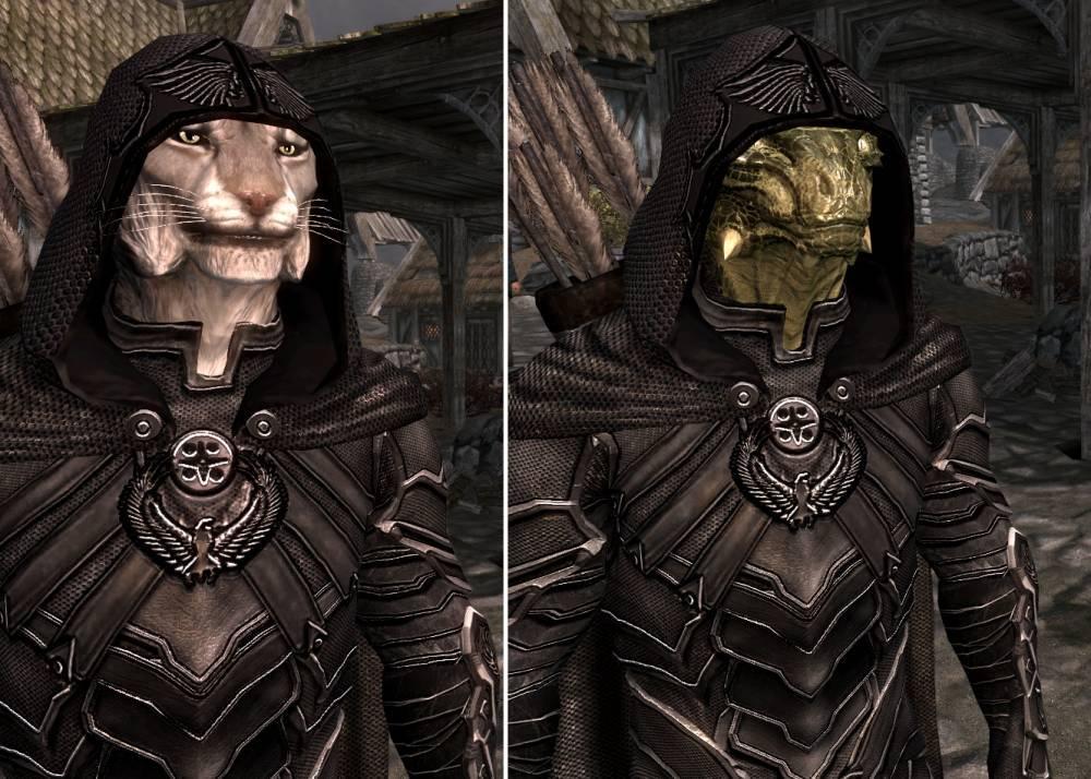 Elder Scrolls 5 Skyrim Спутники